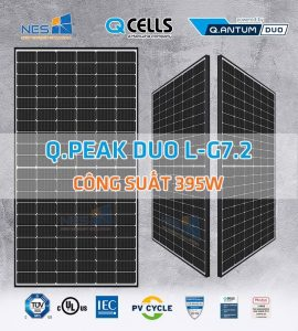 Tấm pin năng lượng mặt trời Qcells QPeak Duo LG5.2 395